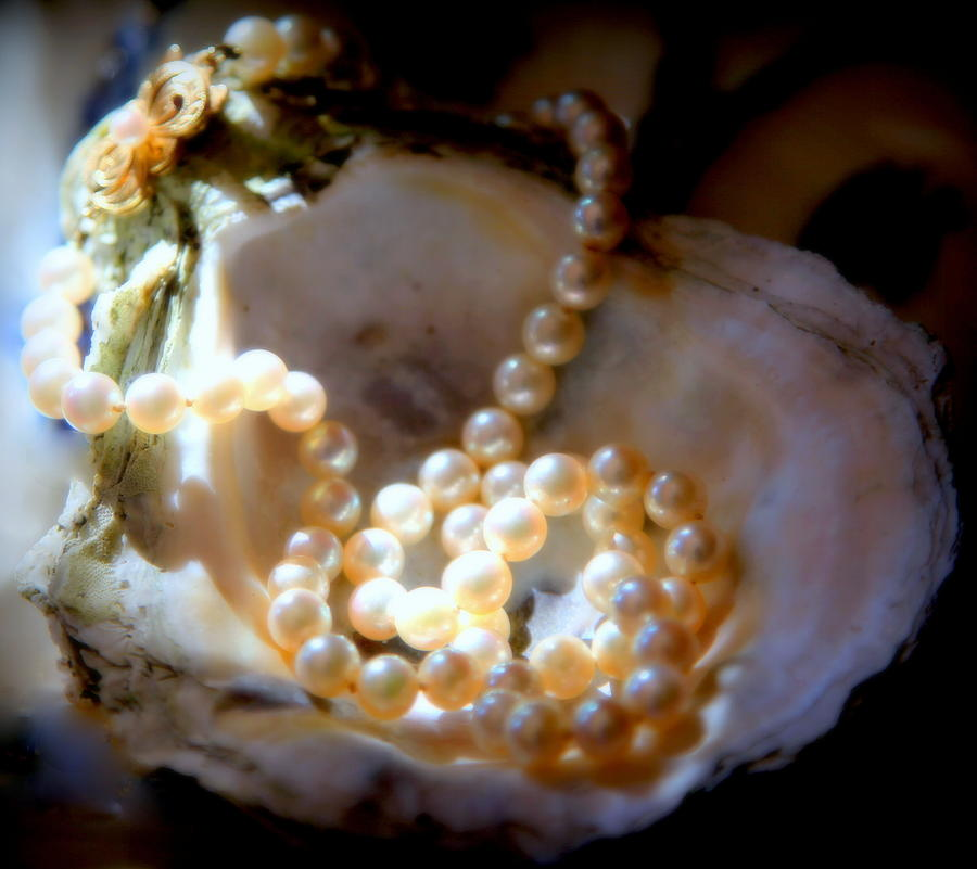 Jewels Photograph - Romance Of The Sea by Karen Wiles