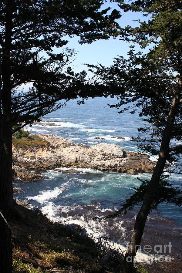 Coast Photograph - Romantic California Coast by Christiane Schulze Art And Photography