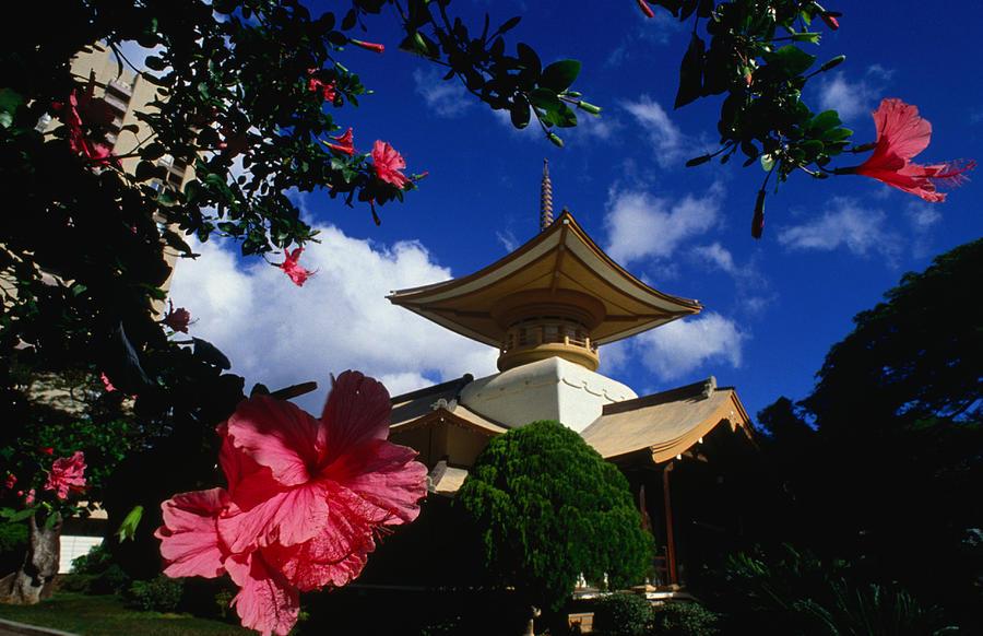 Roof Detail Of Myohiji Temple Moss Photograph by John Elk