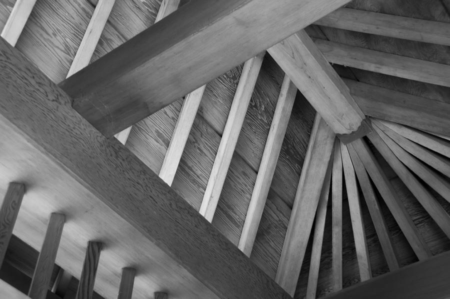 Roof Structure by Larry Bohlin