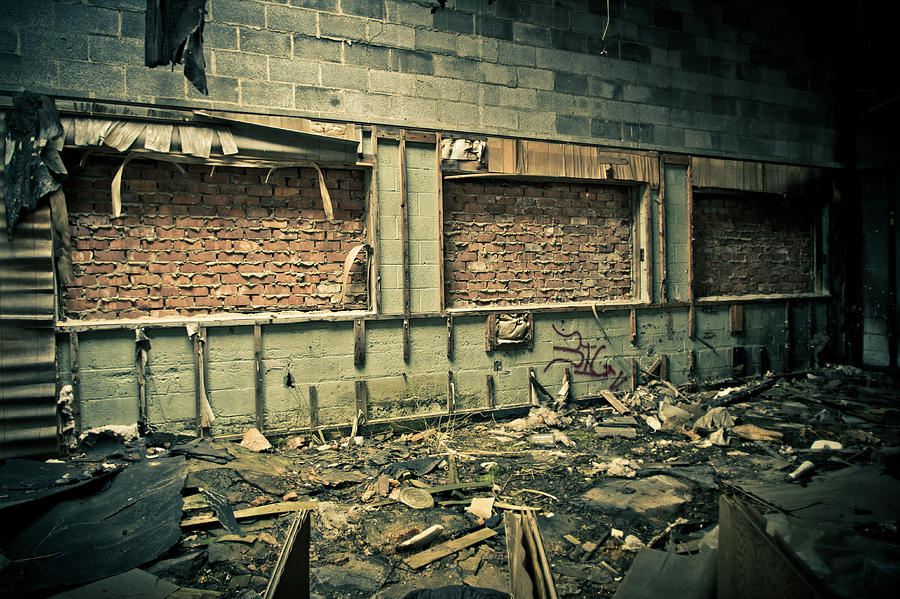 Packard Automotive Plant Photograph - Room With A View by Priya Ghose