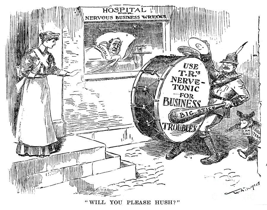 1908 Photograph - Roosevelt Cartoon, 1908 by Granger