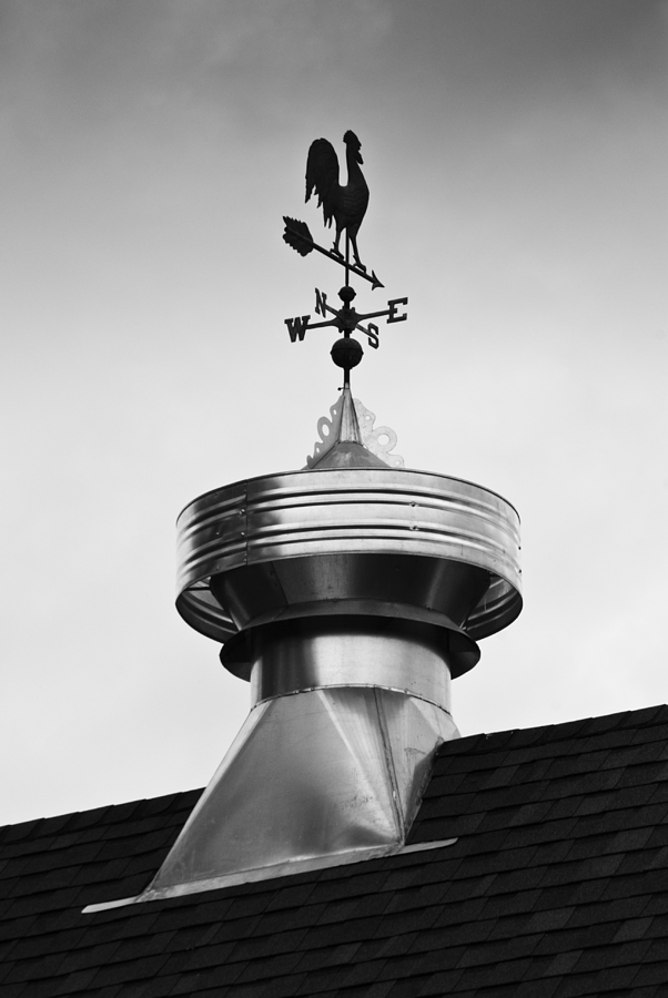 Black And White Photograph - Rooster Vane by Christi Kraft