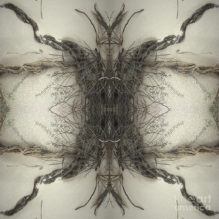 Roots Digital Art - Roots Two by Carina Kivisto