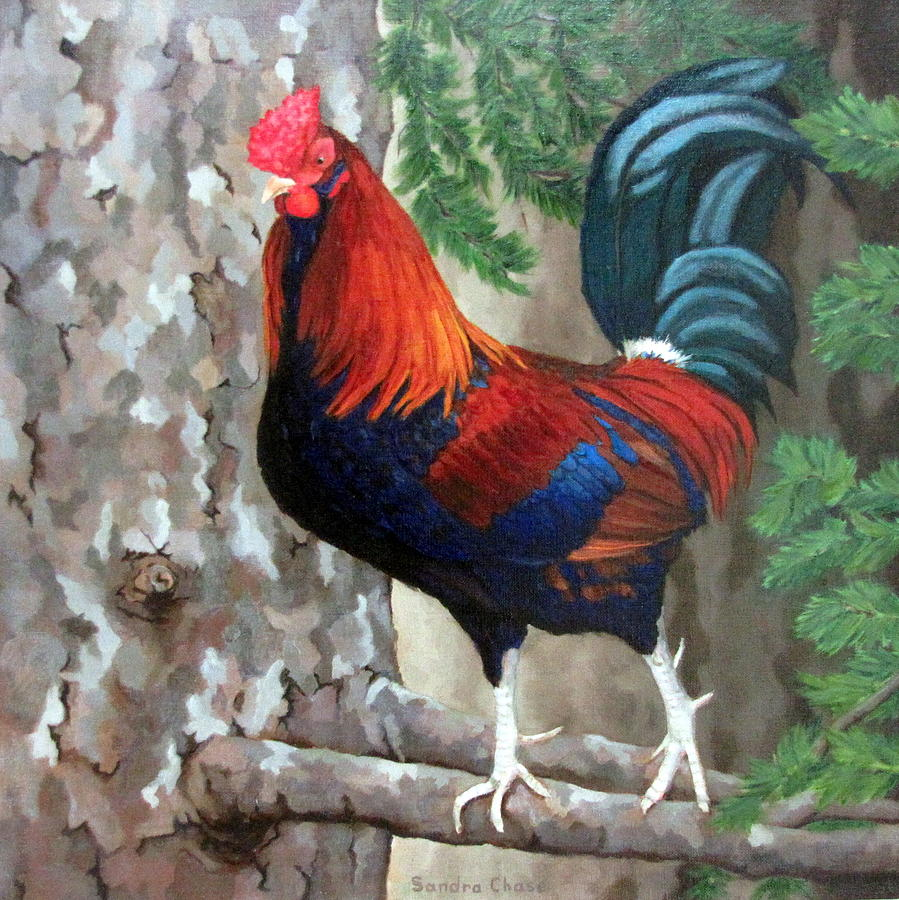 Roosters Painting - Roscoe The Rooster by Sandra Chase