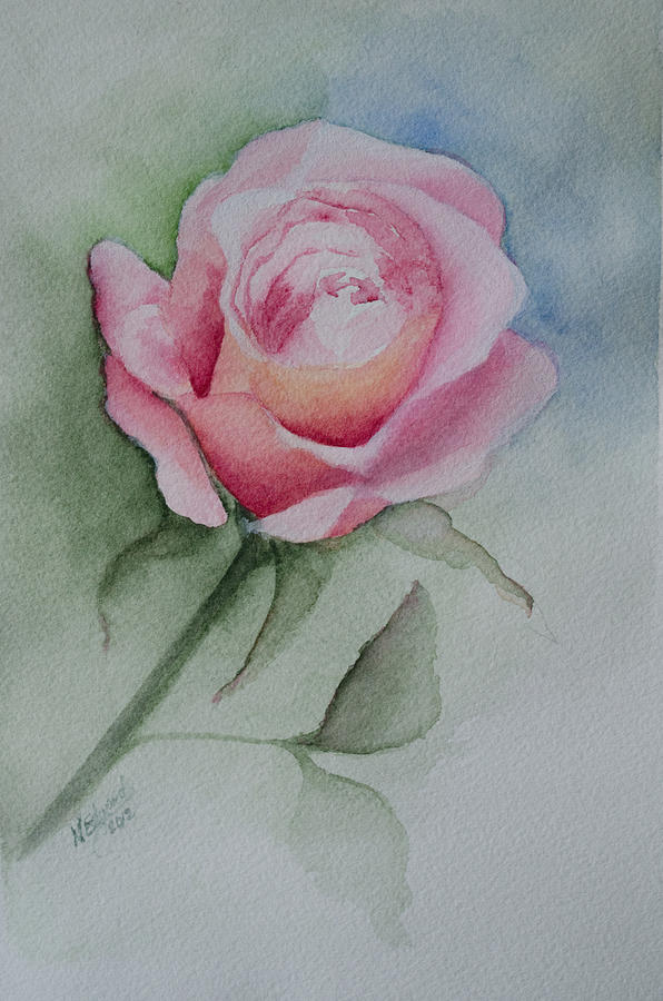 Flower Painting - Rose 1 by Nancy Edwards