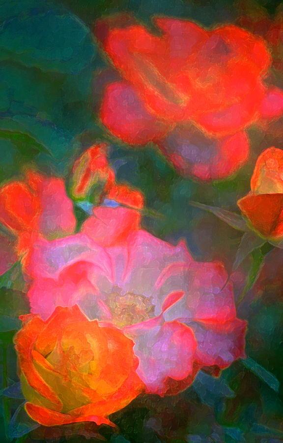 Floral Photograph - Rose 187 by Pamela Cooper