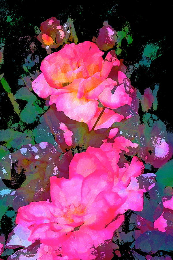 Floral Photograph - Rose 193 by Pamela Cooper