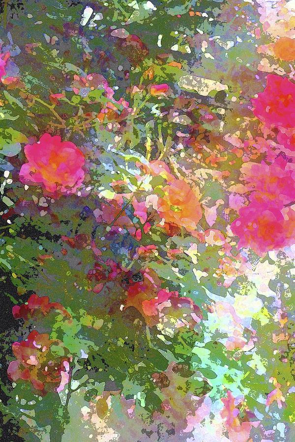 Floral Photograph - Rose 207 by Pamela Cooper