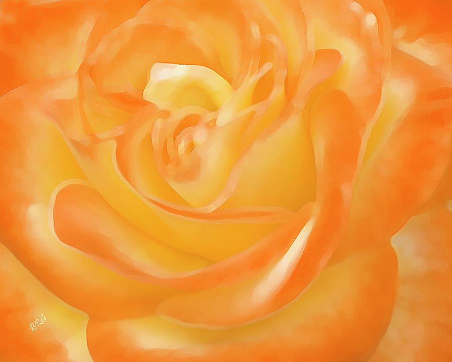 Orange Flower Photograph - Rose by Ben and Raisa Gertsberg