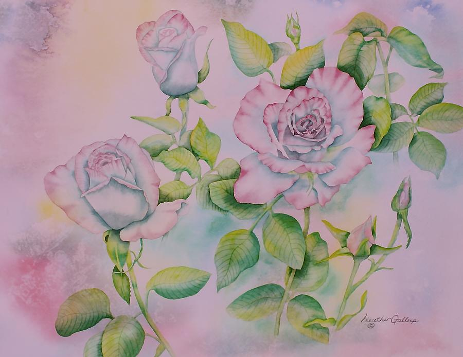 Roses Painting - Rose Bloom by Heather Gallup
