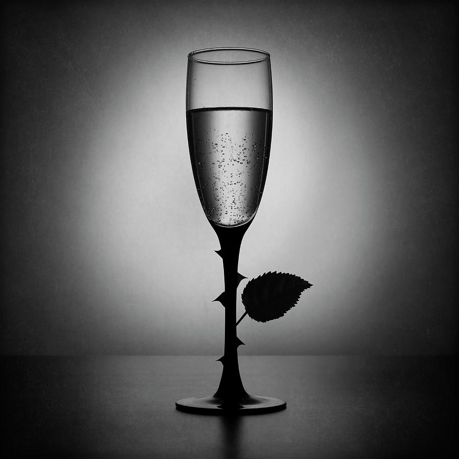 Still Life Photograph - Rose Champagne(an Improved Version) by Victoria Ivanova