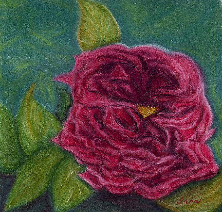 Flower Painting - Rose by Dana Strotheide