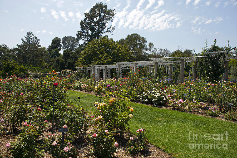 Botanical Garden Huntington Beach California