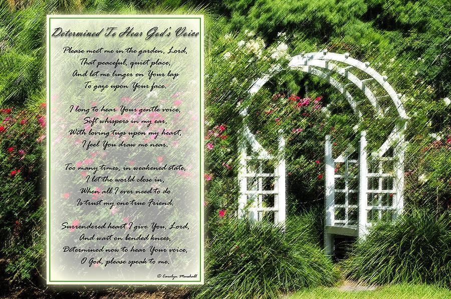 Rose Garden Prayer Photograph By Carolyn Marshall
