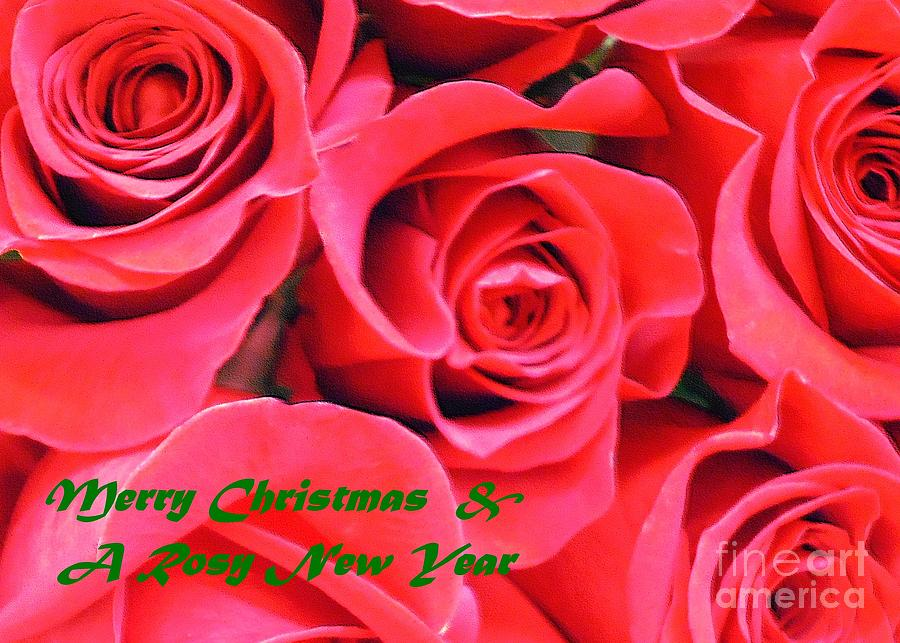 Rose lovers christmas card photograph by barbie corbett newmin merry christmas photograph rose lovers christmas card by barbie corbett newmin m4hsunfo
