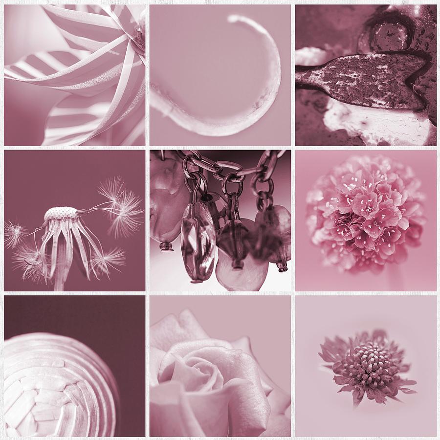 Pink Photograph - Rose Mosaic by Lisa Knechtel