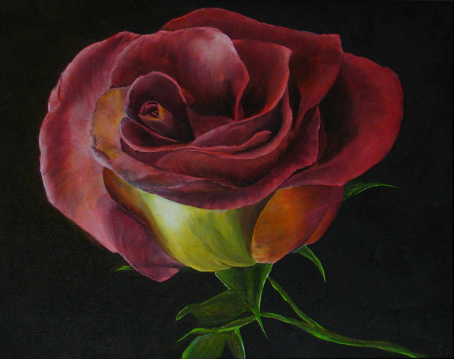 Rose Painting - Rose by Sherry Robinson