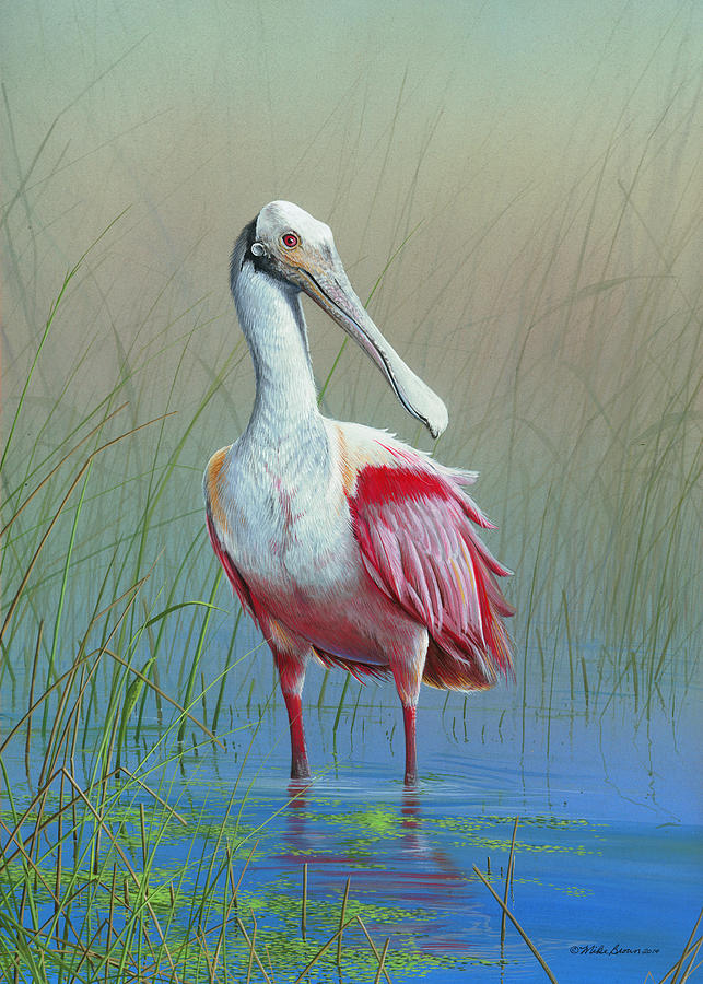 Roseate Spoonbill Painting - Roseate Spoonbill by Mike Brown