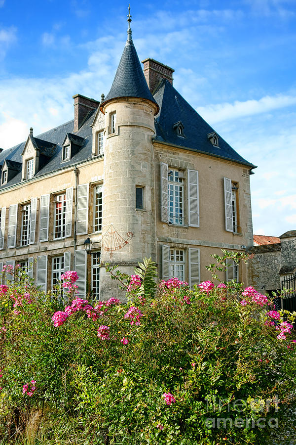 France Photograph - Roses At The Castle by Olivier Le Queinec
