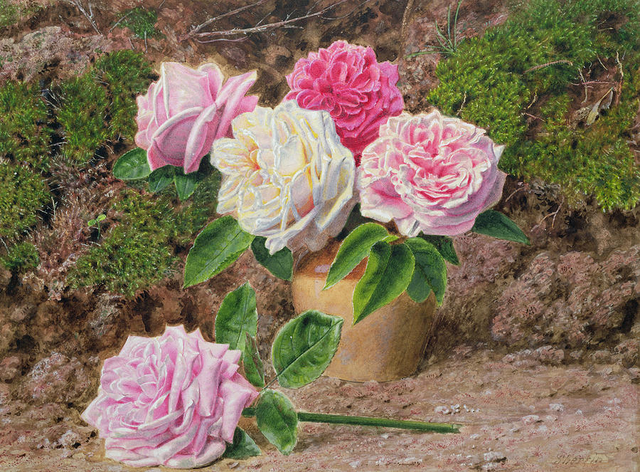 Still Life Painting - Roses In An Earthenware Vase By A Mossy by John Sherrin