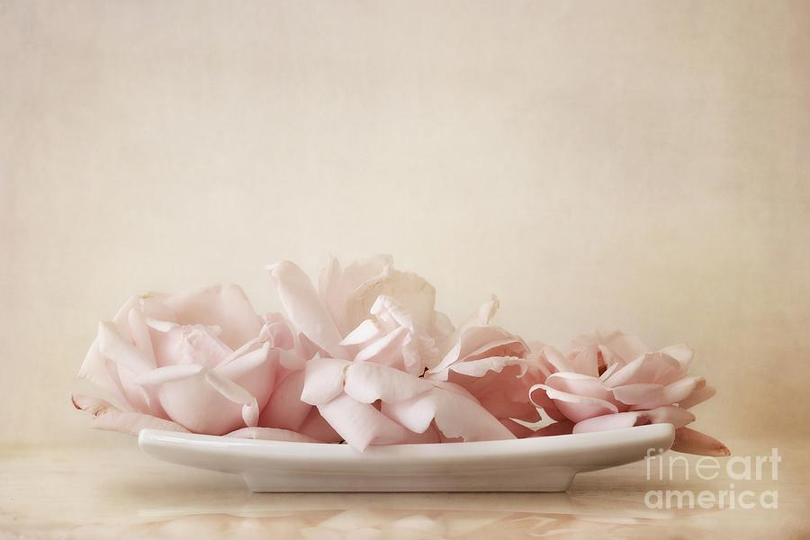 Delicate Photograph - Roses by Priska Wettstein