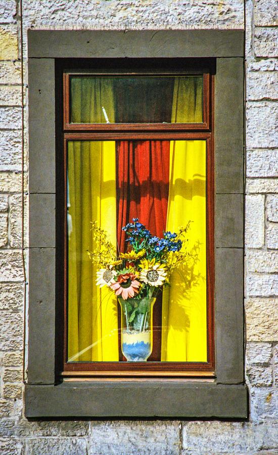 Window Photograph - Roslin Window by Ross Henton