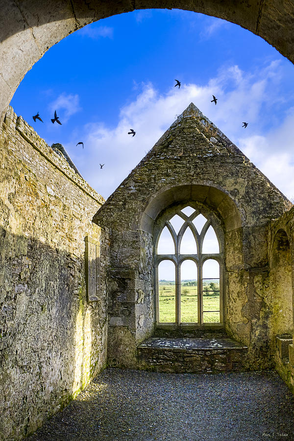 Galway Photograph - Ross Errilly Friary - Irish Monastic Ruins by Mark E Tisdale