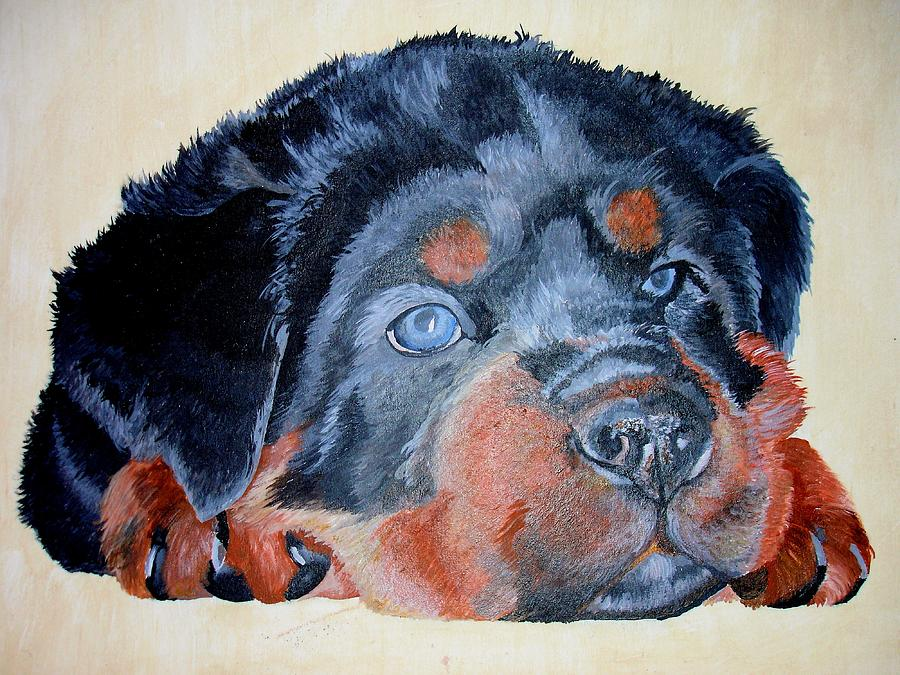 Rottweiler Painting - Rottweiler Puppy Portrait by Taiche Acrylic Art