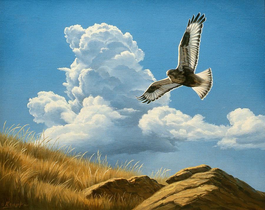 Wildlife Painting - Rough-legged Hawk by Paul Krapf