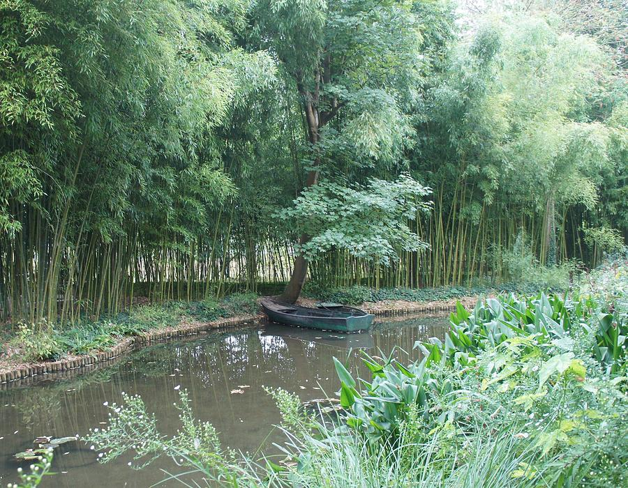 Trees Photograph - Row Boat by Kristine Bogdanovich
