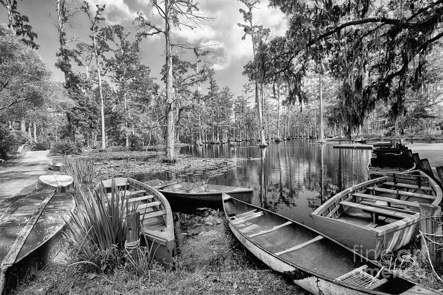 Cypress Trees Photograph - Row Boats In Cypress Tree Swamp IIi by Dan Carmichael