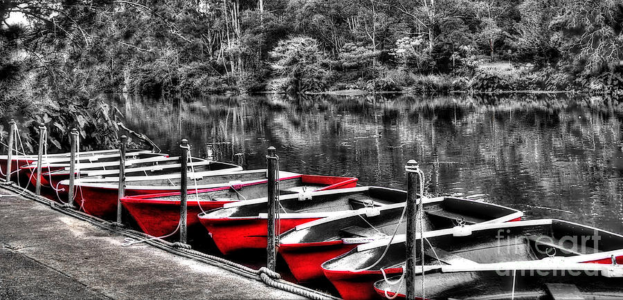 Hdr Photograph - Row Of Red Rowing Boats by Kaye Menner
