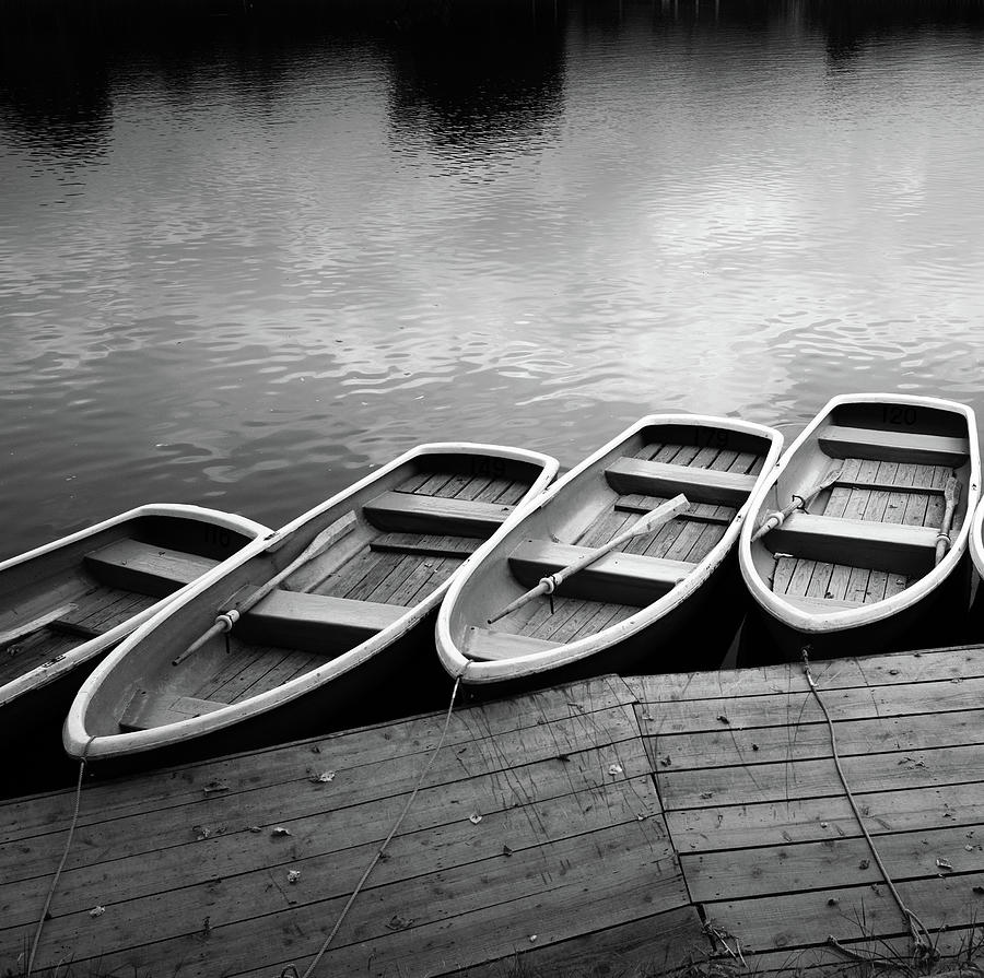 Rowing Boats Photograph by Steve Fleming