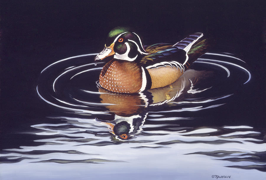 Duck Painting - Royal Reflections by Richard De Wolfe