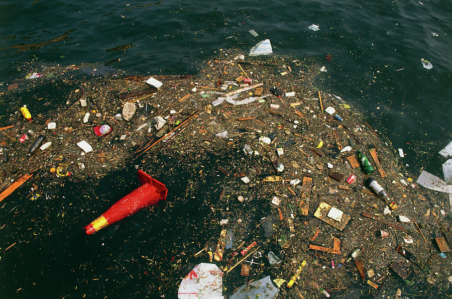 Environment Photograph - Rubbish Floating On A River by Tony Craddock/science Photo Library