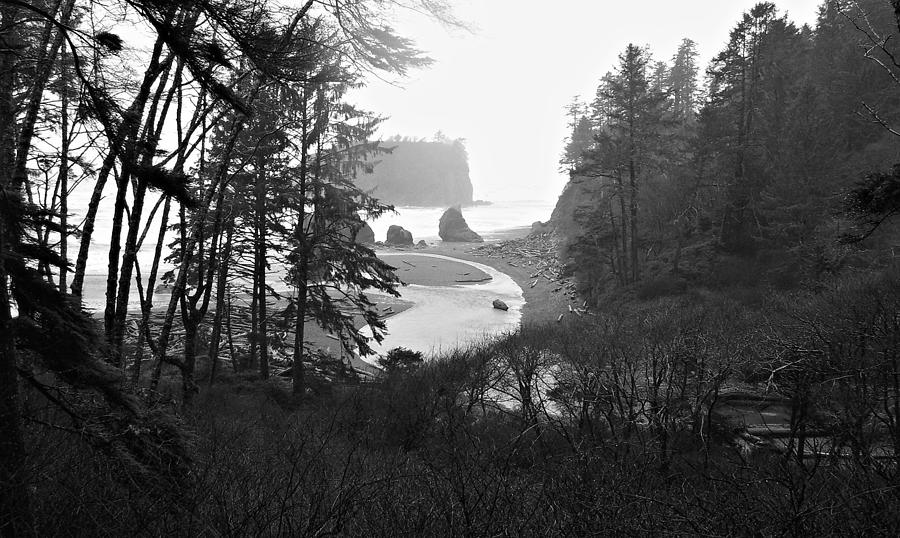 Ruby Beach Photograph - Ruby Beach In The Winter In Black And White by Jeanette C Landstrom