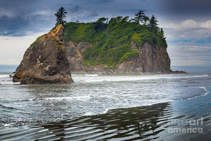 America Photograph - Ruby Beach Seastack by Inge Johnsson