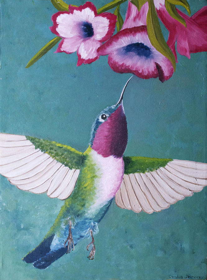 Birds Painting - Ruby-throated Hummingbird by Cecilia Stevens
