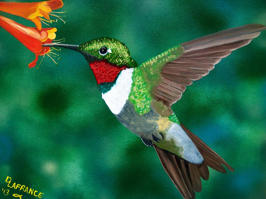 Ruby Throated Hummingbird Painting By Debbie LaFrance