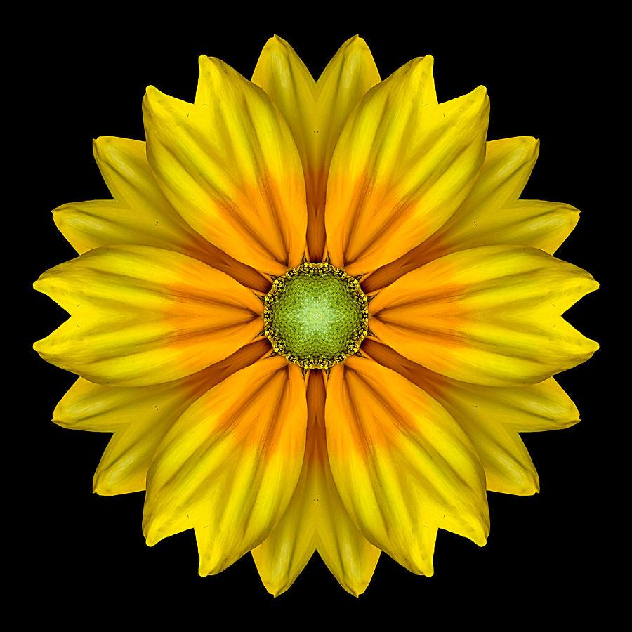 Flower Photograph - Rudbeckia Prairie Sun I Flower Mandala by David J Bookbinder