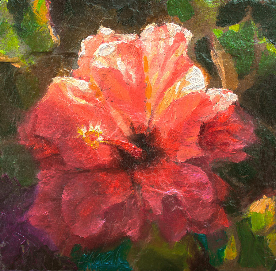 Ruffled light double hibiscus flower painting by karen whitworth petals painting ruffled light double hibiscus flower by karen whitworth izmirmasajfo Image collections