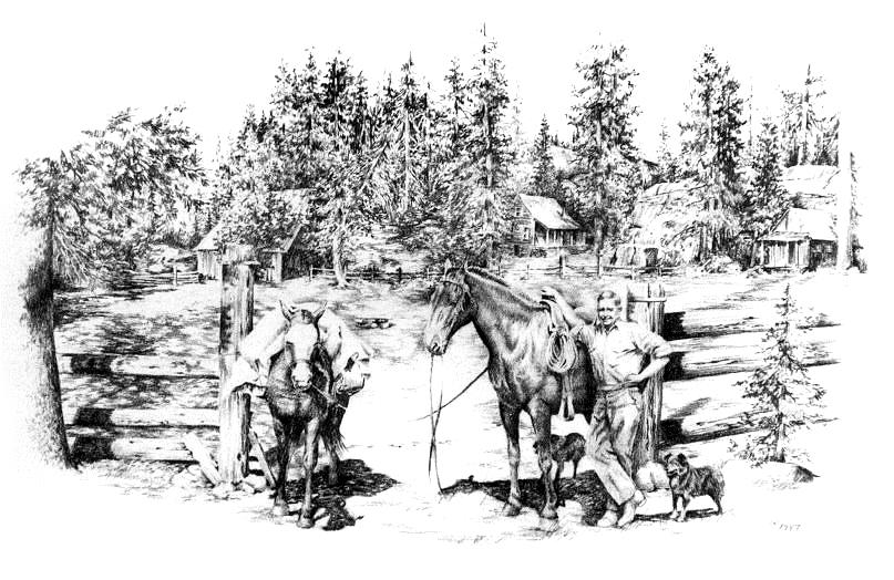 Ranching Drawing - Rufus Swift At The Bassi by Jonni Hill