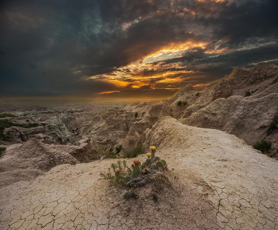 Sunset Photograph - Rugged Beauty by Aaron J Groen