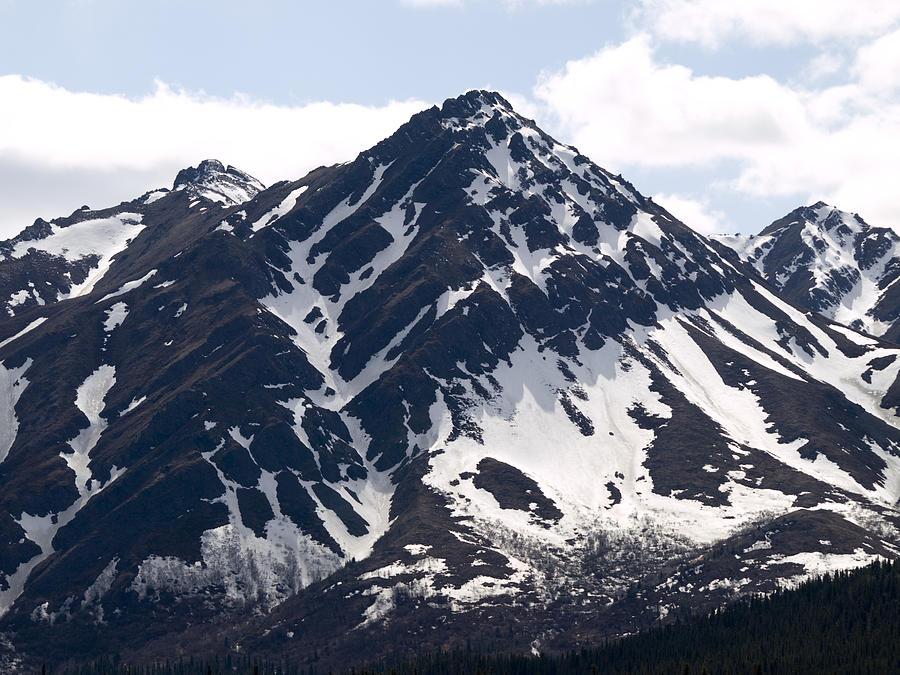 Denali National Park Photograph - Rugged  by Tara Lynn