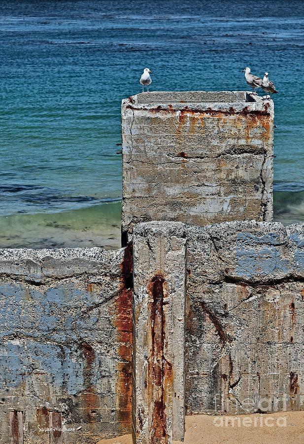 Susan Wiedmann Photograph - Ruins At Monterey Bay by Susan Wiedmann