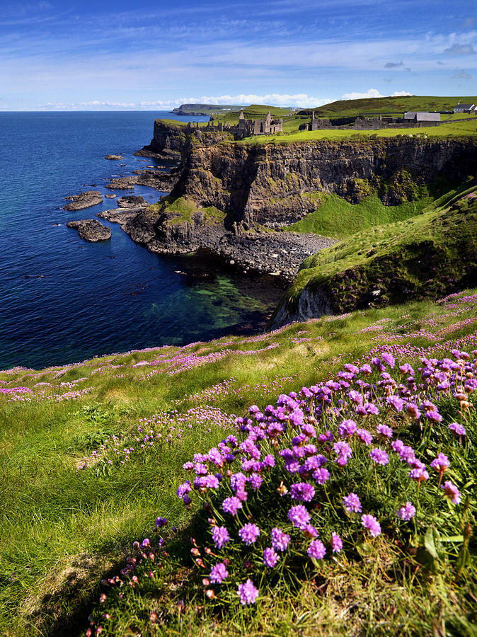 Ruins of Dunluce Castle on the north Antrim coast of Ireland. Photograph by Chris Hill