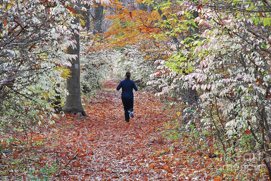 Run Photograph - Run Through The Woods by Allen Beatty