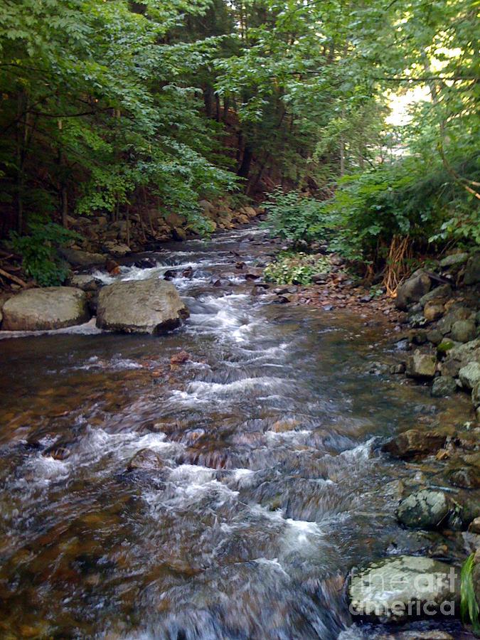 Waterfall Photograph - Running Brook by Nancie Johnson
