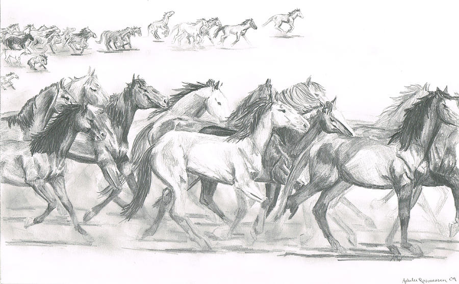 running horses drawing by ashelee rasmussen